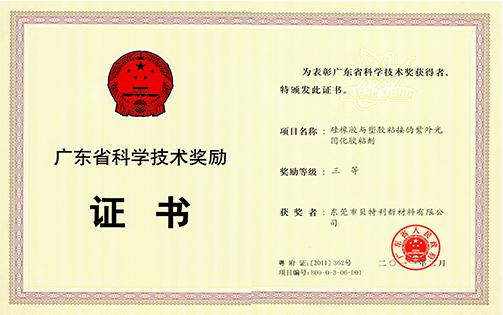 2010年省科技奖三等奖(硅橡胶与塑胶粘接的紫外光固化胶粘剂)