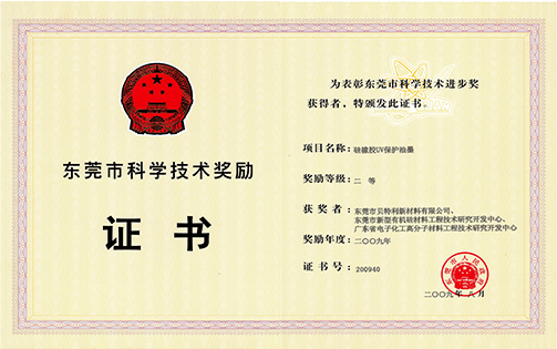 2009年市科技奖二等奖(硅橡胶UV保护油墨)